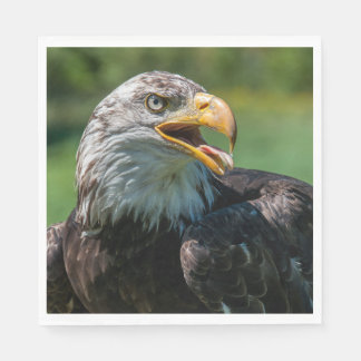 photograph of eagle disposable napkin