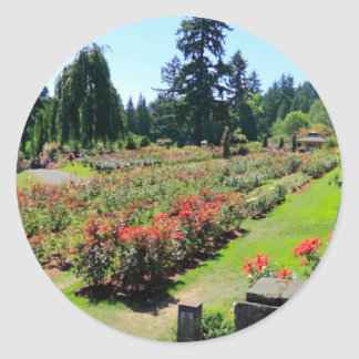 Photograph of Rose Garden Portland Oregon Round Stickers