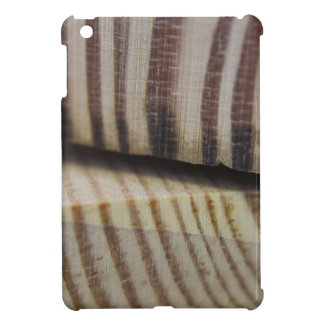 Photograph of wood case for the iPad mini