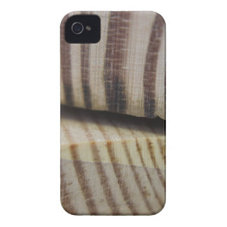 Photograph of wood iPhone 4 case
