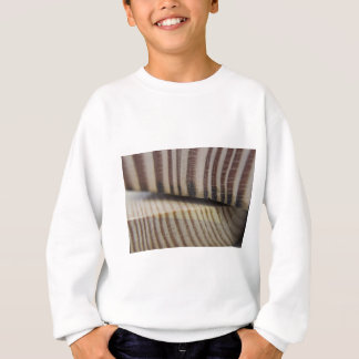Photograph of wood sweatshirt
