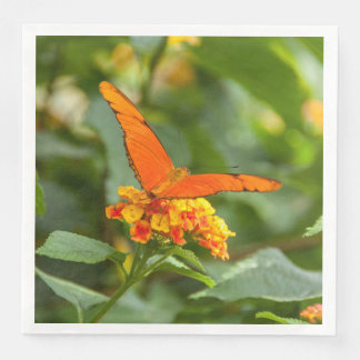 , photograph paper napkin of a butterfly