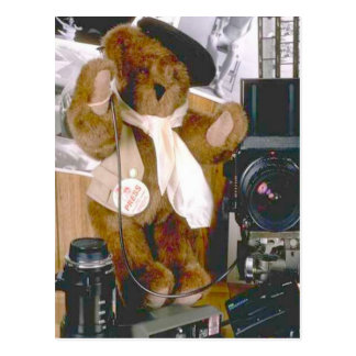 Photographer Bear - Press Journalist Postcard