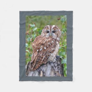 Photographic owl fleece blanket