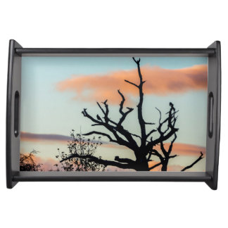 Photography art silhouette tree serving tray