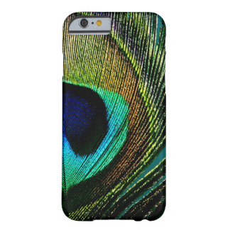 Photography Peacock Feather iPhone CaseMate Barely There iPhone 6 Case