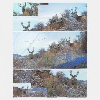 Photography photoshop wildlife art fleece blanket
