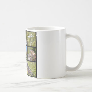 Photos mosaic Alpine marmots and edelweiss Coffee Mug