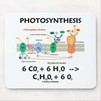 Photosynthesis (Carbon Dioxide + Water) Mouse Mat