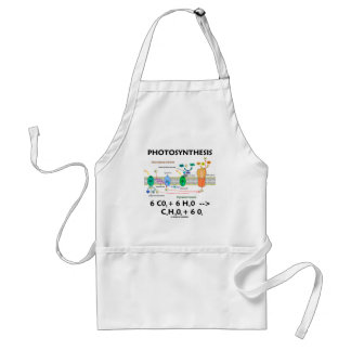 Photosynthesis (Carbon Dioxide + Water) Standard Apron