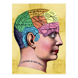 Phrenology Postcard