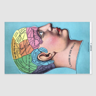 Phrenology Sticker