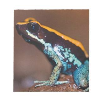 Phyllobates vittatus, a poison arrow frog notepad