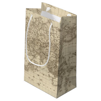 Physical world map small gift bag