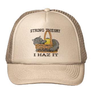 Physics String Theory Cat Hats