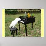 Pianist Parrots Poster
