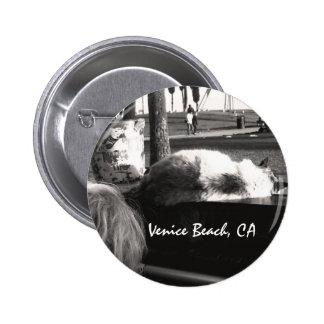 Piano Cat Venice Beach California Photography 6 Cm Round Badge