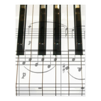 Piano Keyboard and Music Notes Postcard