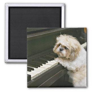 piano player fridge magnets