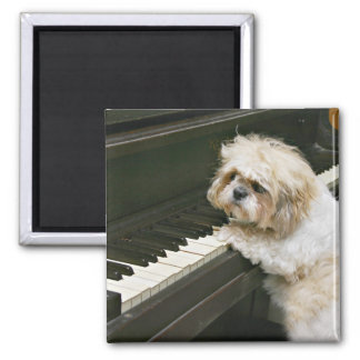 piano player square magnet