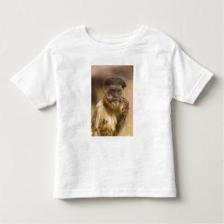 Piaui, Brazil, Brown Capuchin, Cebus apella, Toddler T-Shirt