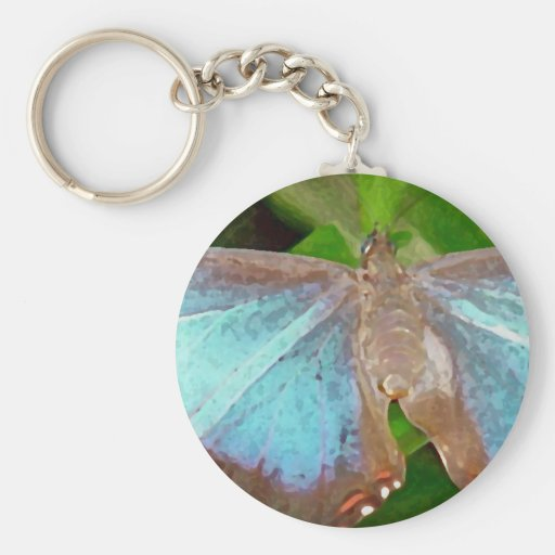 Pic of Butterfly Key Chain