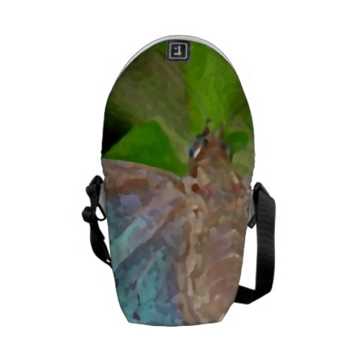 Pic of Butterfly Messenger Bags