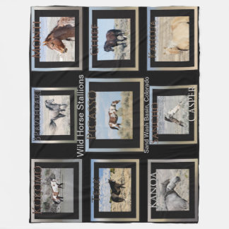 Picasso and Wild Horse Stallions Fleece Blanket