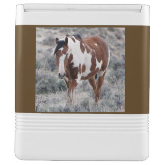 Picasso, Stallion of Sand Wash Basin Igloo Cooler