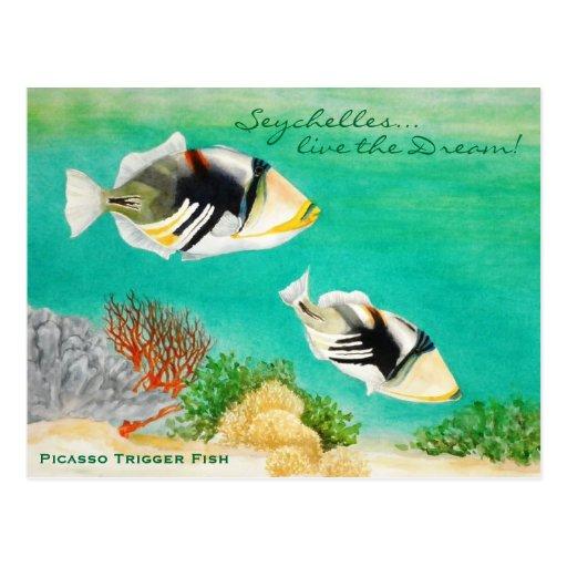 Picasso Trigger Fish Postcards