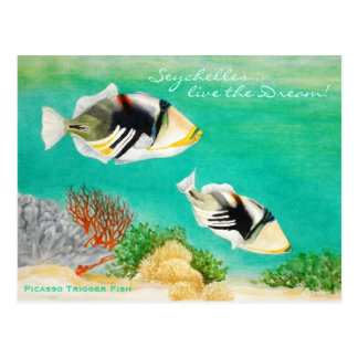 Picasso Trigger Fish Post Cards