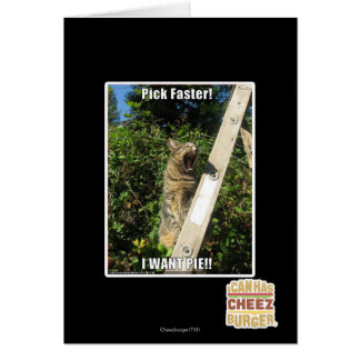 Pick Faster! Card