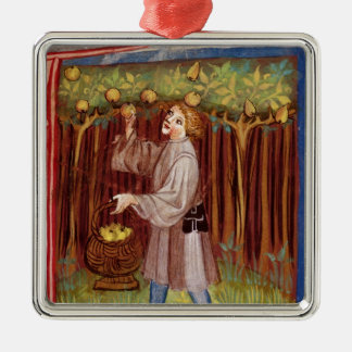Picking fruit Silver-Colored square decoration