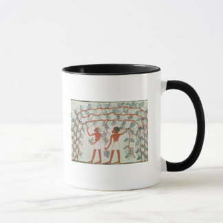 Picking grapes, from the Tomb of Nakht Mug