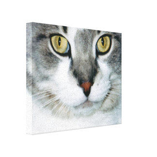 Pickle the Cat Canvas Print
