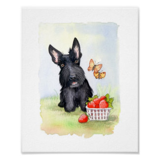 Pickles and strawberries Scotties Poster