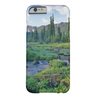 Picnic Creek in the Jewel Basin of the Swan Barely There iPhone 6 Case