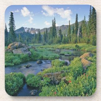 Picnic Creek in the Jewel Basin of the Swan Coaster