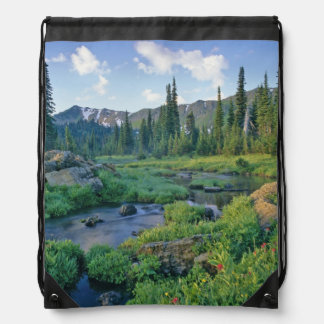 Picnic Creek in the Jewel Basin of the Swan Drawstring Bag