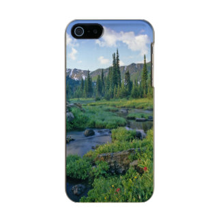 Picnic Creek in the Jewel Basin of the Swan Incipio Feather® Shine iPhone 5 Case