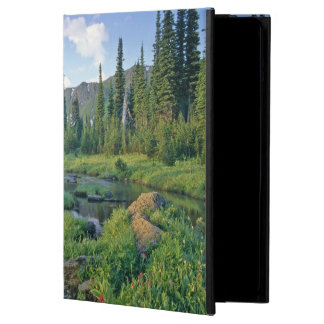 Picnic Creek in the Jewel Basin of the Swan iPad Air Cover