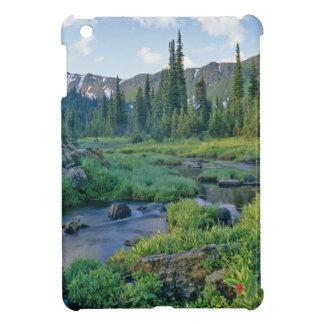 Picnic Creek in the Jewel Basin of the Swan iPad Mini Cover