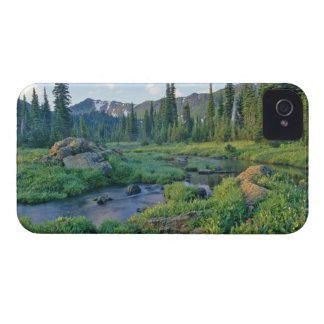 Picnic Creek in the Jewel Basin of the Swan iPhone 4 Case-Mate Case