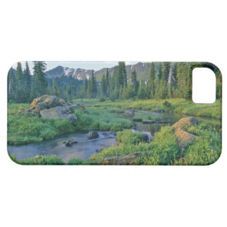 Picnic Creek in the Jewel Basin of the Swan iPhone 5 Cases