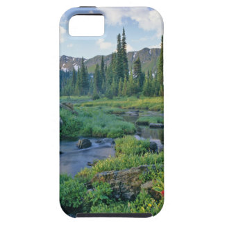 Picnic Creek in the Jewel Basin of the Swan iPhone 5 Covers