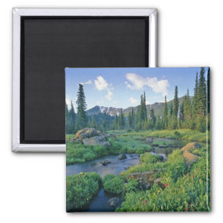 Picnic Creek in the Jewel Basin of the Swan Refrigerator Magnet