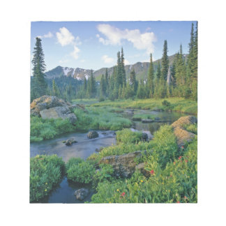 Picnic Creek in the Jewel Basin of the Swan Notepad