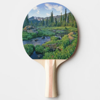 Picnic Creek in the Jewel Basin of the Swan Ping Pong Paddle