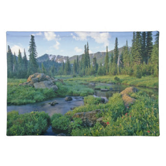 Picnic Creek in the Jewel Basin of the Swan Placemat