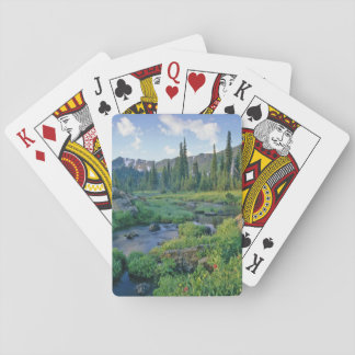 Picnic Creek in the Jewel Basin of the Swan Playing Cards